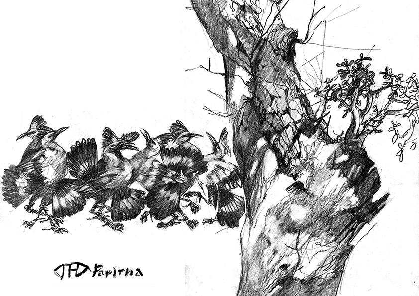 РИСУНОК | карандаш, бумага | 2012 | Наталья Папирна